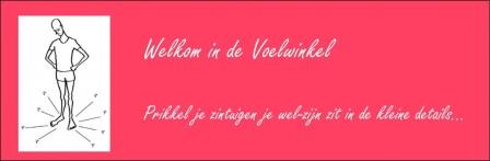 Voelwinkel logo